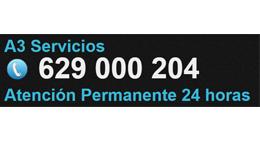 a3 SERVICIO PROFESIONAL