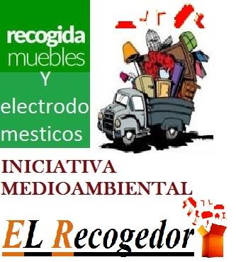 El recogedor-Zamora