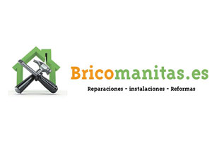 Bricomanitas