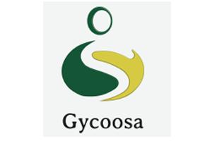 Gycoosa SL