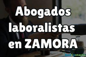 Abogados Laboralistas en Zamora