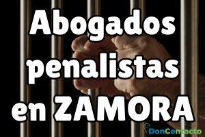 Abogados penalistas en Zamora