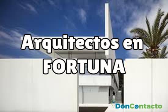 Arquitectos en Fortuna