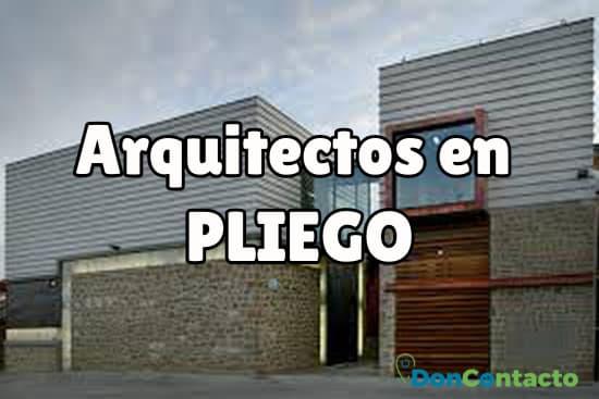 Arquitectos en Pliego