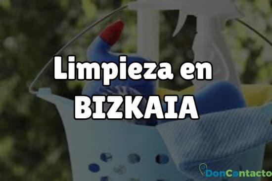 Limpieza en Bizkaia