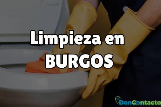 Limpieza en Burgos