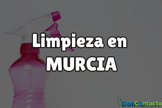 Limpieza en Murcia