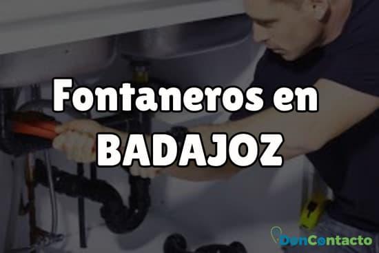 Fontaneros en Badajoz