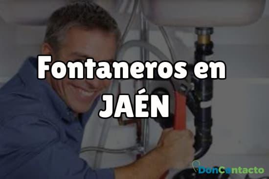 Fontaneros en Jaén