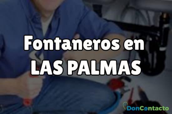 Fontaneros en Las Palmas
