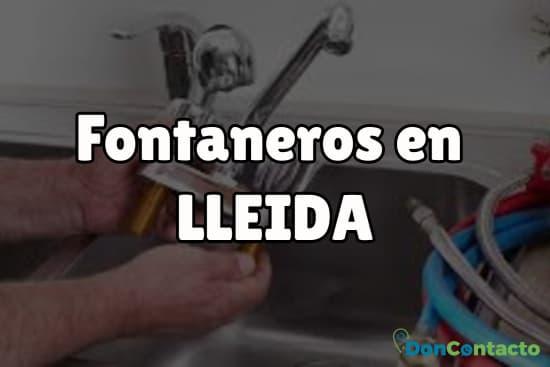 Fontaneros en Lleida