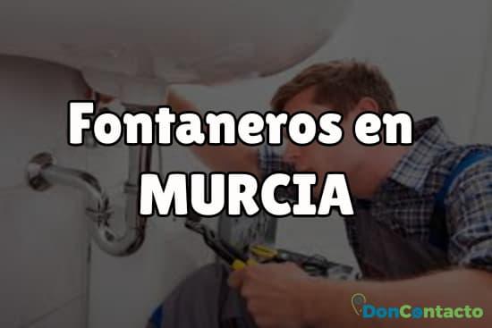 Fontaneros en Murcia