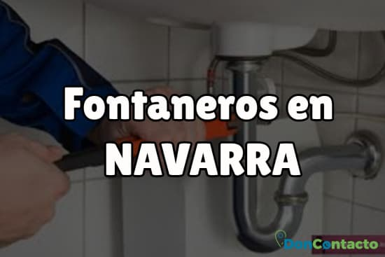 Fontaneros en Navarra