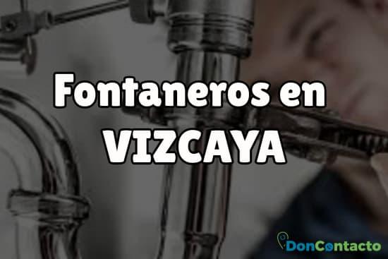Fontaneros en Vizcaya