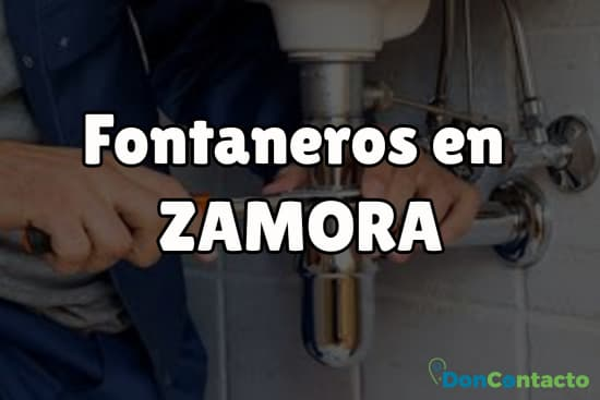 Fontaneros en Zamora